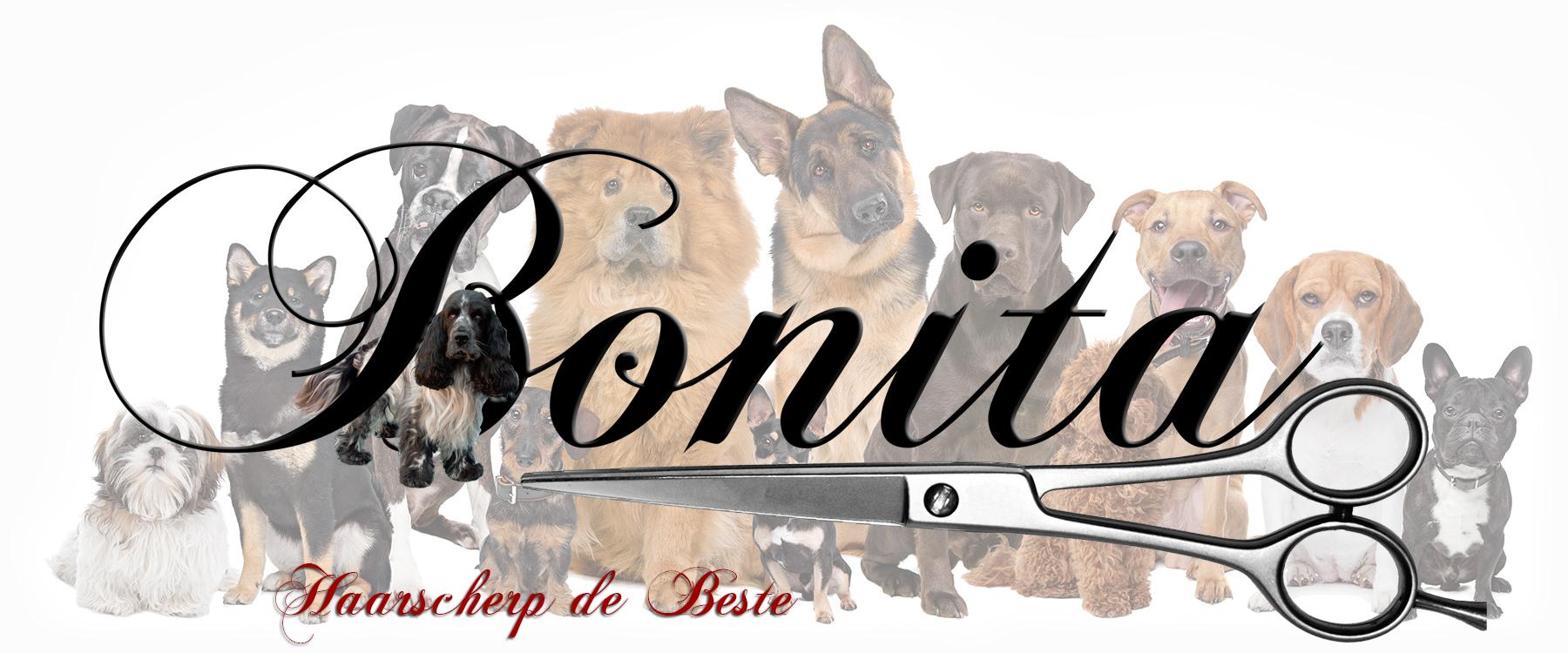 Bonita Dog Groomer